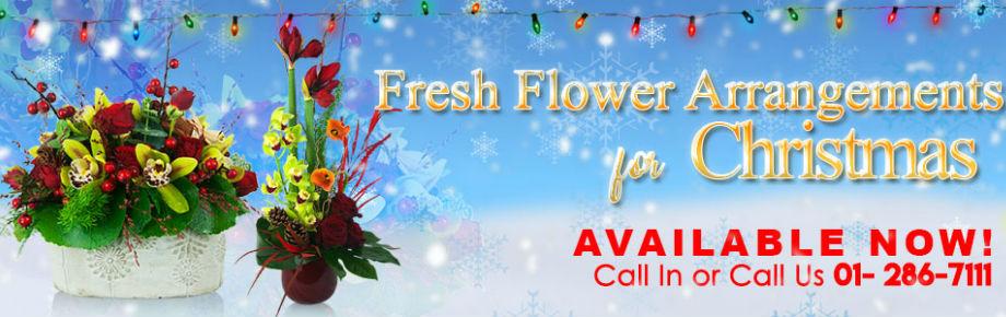 Irish Florist Bray supplying Dublin & Wicklow, Ireland – Gorgeous Bouquets & Flowers Bray!