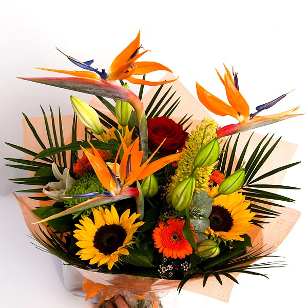 Vibrant Exotic – Irish Florist Bray supplying Dublin & Wicklow ...