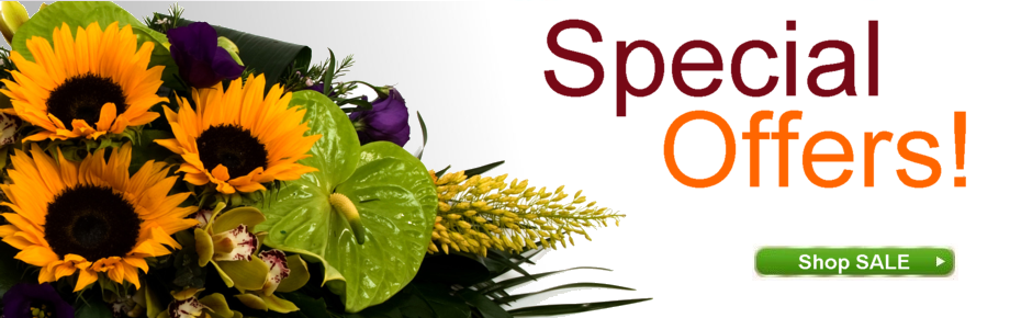 Florist Bray Special Offers